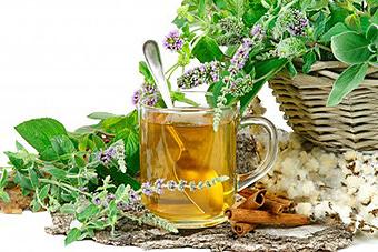 imagen de salud natural ibiza. Salud ibiza. Naturopatía y disciplinas naturales