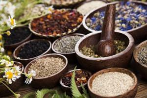 Sección Salud Natural: Foto de plantas medicinales con un mortero