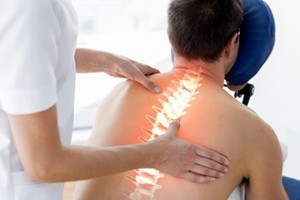 Sección Fisioterapia y Osteopatía: Exploración de una columna vertebral